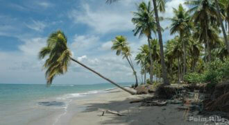 Property with 1,070 meters beachfront