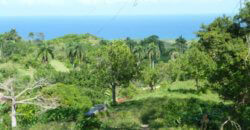 Plots with fantastic sea views, ideal for a project