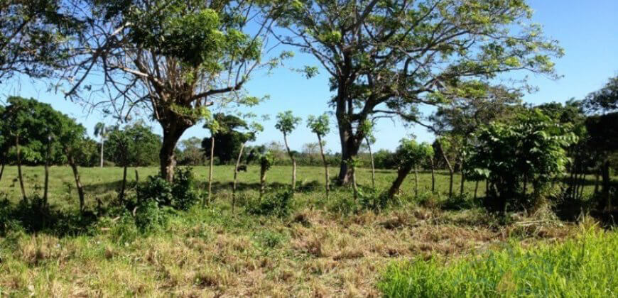 Building lot within gated community