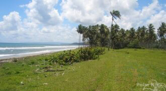 400 Meters Beachfront Property