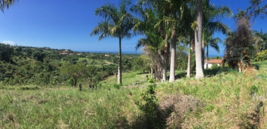 Top Ocean view Lot in Gated Community