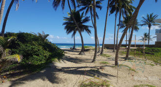 Inexpensive beachfront property outside Cabarete