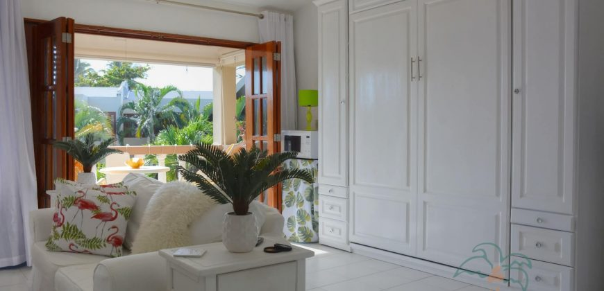 Nice and very bright studio at the beach in Cabarete