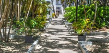 Beautiful 2 bedroom condo in Cabarete