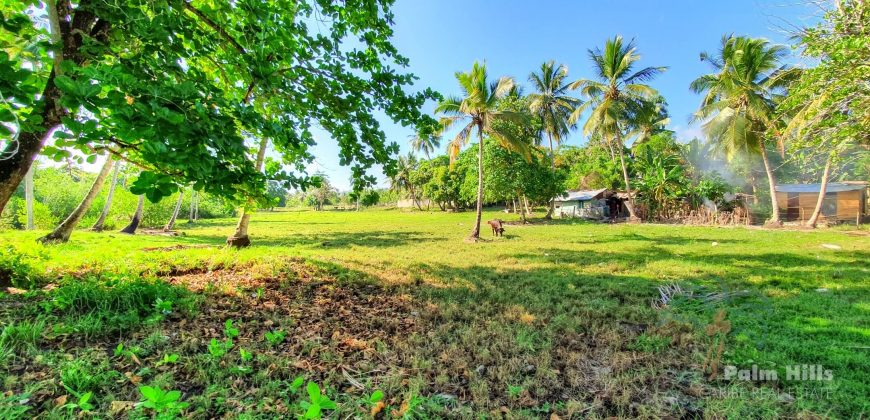 Plot 50m from the beach with private beach access