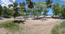 White sand beach lot